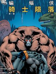 蝙蝠侠:骑士陨落