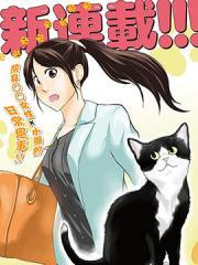 爱猫相伴的玩家小姐